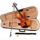 harga biola Paesold Violin Outfit PA802 terbaru