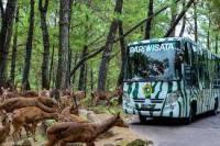 Harga tiket masuk taman safari terbaru