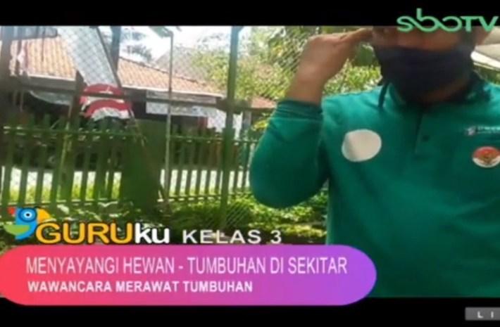 Soal dan Jawaban SBO TV 14 Agustus SD Kelas 3