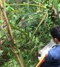 14-Pemerkosa-Gadis-14-tahun-di-Bengkulu