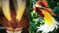 """Bupati Dogiyai"" Tolak Penggunaan Mahkota Burung Cenderawasih Pada PON XX Papua"