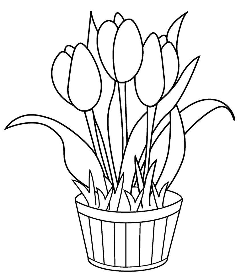 The Best Gambar Bunga Dalam Pot Untuk Mewarnai