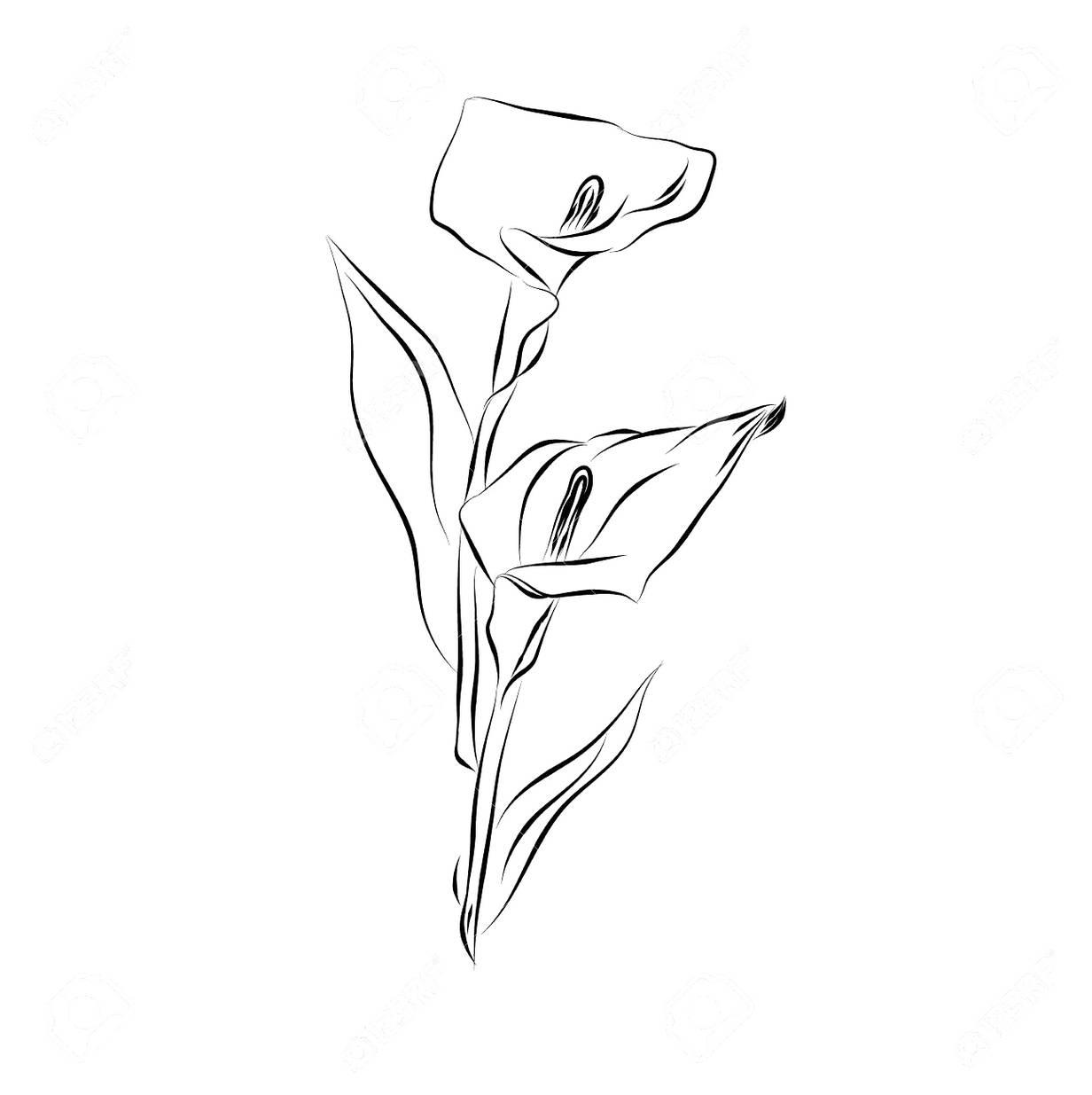 Kumpulan Mewarnai Gambar Sketsa Vas Bunga Desain Interior
