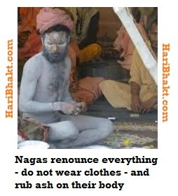 naga sadhus dont wear clothes but rub ash all over body