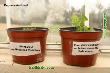 Vedas Indian music experiments with plants