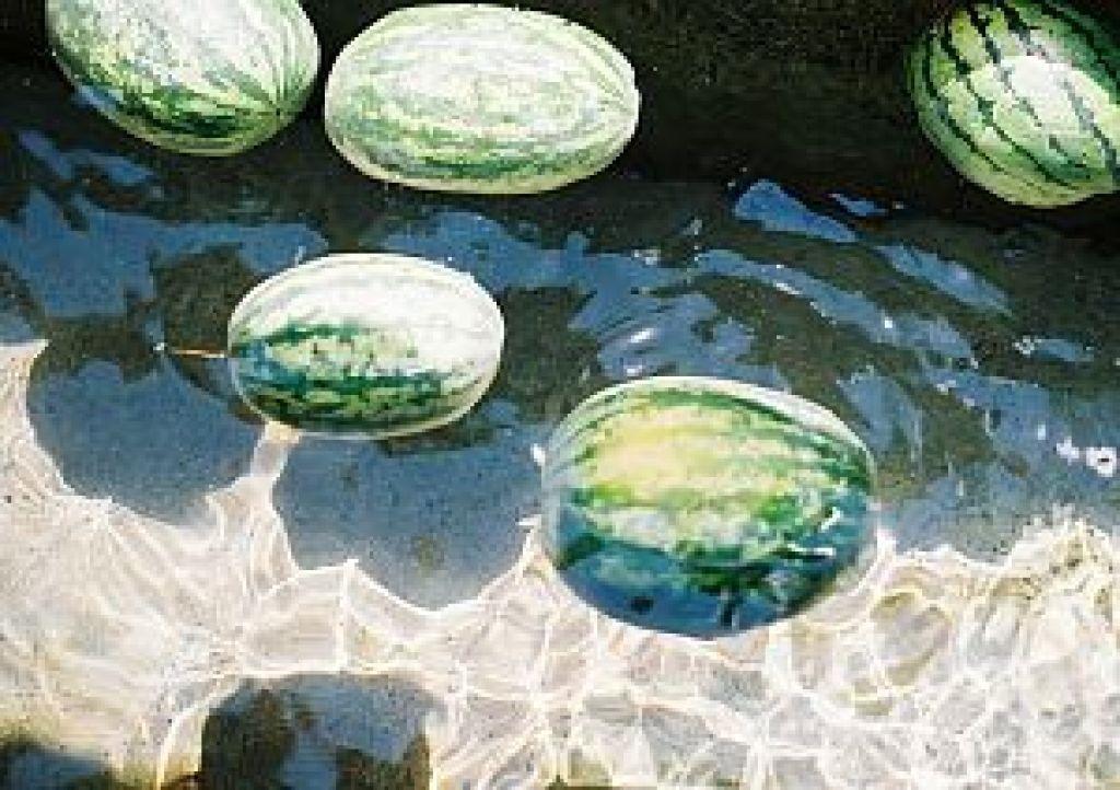 西瓜(スイカ)は天然の白虎湯