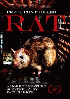 Rat Poster sm