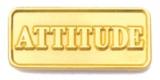 213 101 1 - Attitude Pin