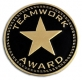 Teamwork Award Pin