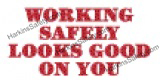 SD1031 2 - Working Safely..