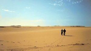 Afropop desert
