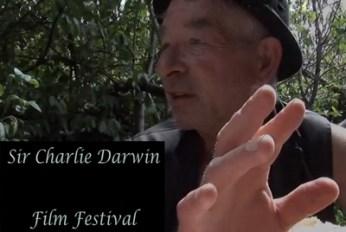 CDFilmfestweb