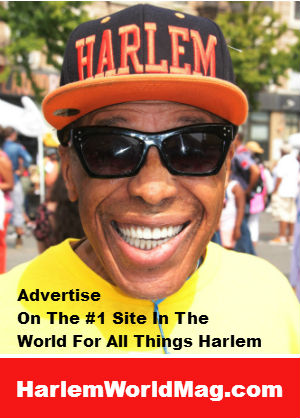 500 x 250 harlemworld hat ad