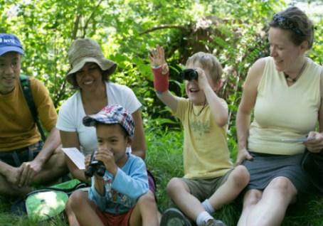 birding-families_l