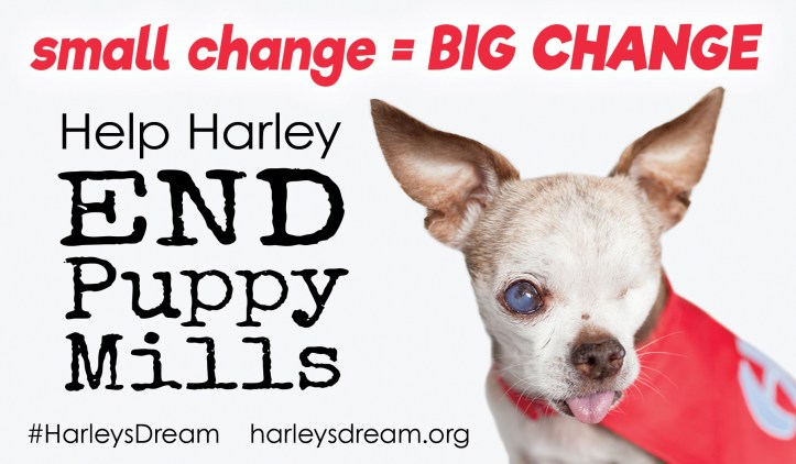 harley-donation-jar-label