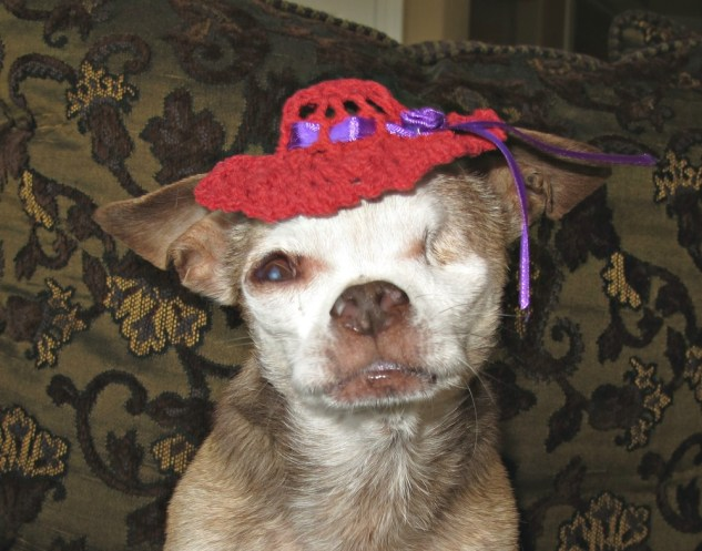 harley-red-hat