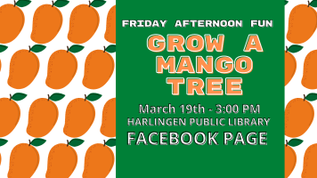 Friday Afternoon Fun:  Grow a Mango Tree