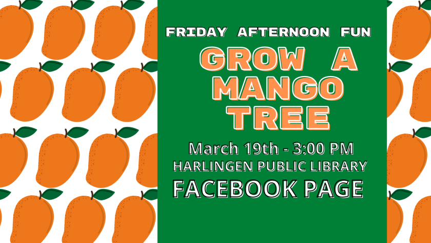Friday Afternoon Fun: Grow A Mango Tree