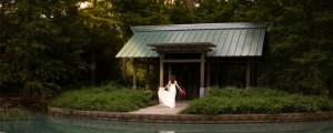 North Houston Wedding Photographer Houston, Texas