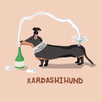 kardashihund