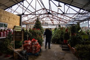 evergreen brickworks winter market (1)
