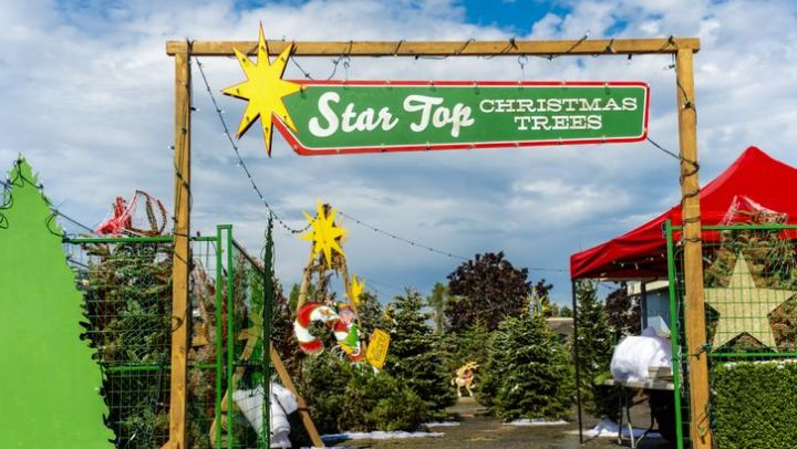 """Preview: """"Christmas Under The Stars"""" A Hallmark Channel """"Countdown To Christmas"""" Original Movie ..."""