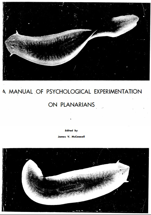 planarian worms skakos