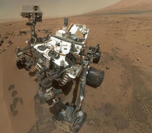 Curiosity, microbes, observing.