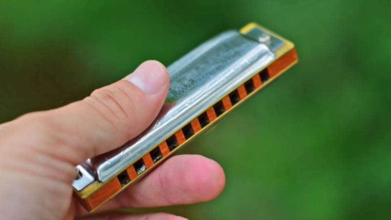How many types of harmonicas are there?