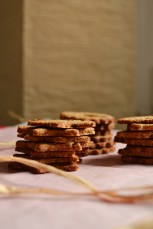 Cranberry Orange Christmas Cookies (DSC_0701)