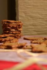 Cranberry Orange Christmas Cookies (DSC_0711)