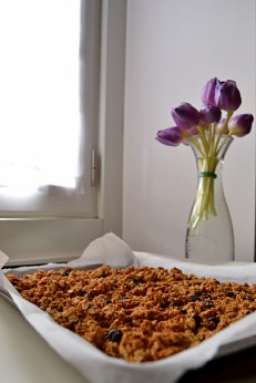 Amaranth Granola with Orange Blossom & Tahini (DSC_0518)