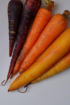 Sumac Roasted Carrot & Cannellini Spread (DSC_0820)