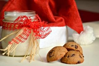 Vegan Chocolate Chip Cookies (DSC_0930)