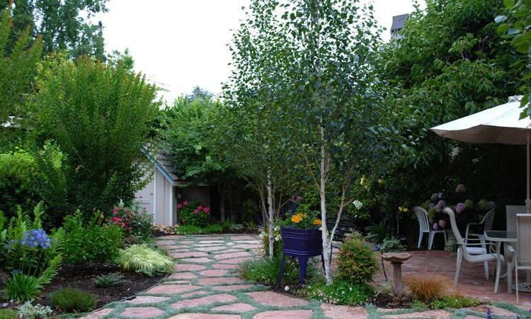 Multi-Function No-Lawn Garden_0248