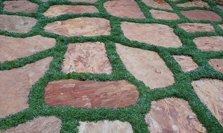 Multi-Function No-Lawn Garden_0253