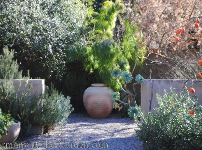 Texture reigns supreme in the Testa-Vought garden | Harmony in the ...