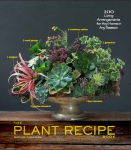 Plant Recipe