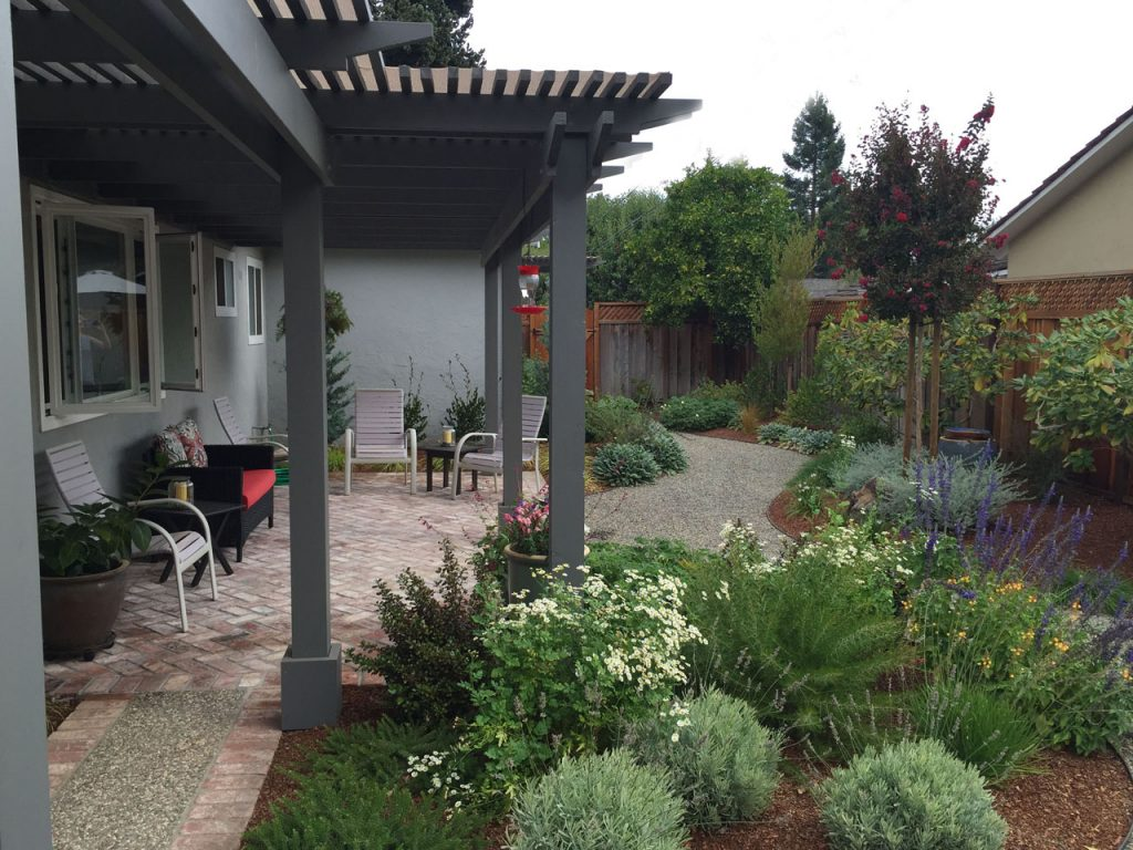 Lawn Free and Low Maintenance11