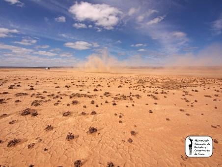 Sahara 2013-20