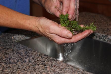 7-19-12 wash herbs