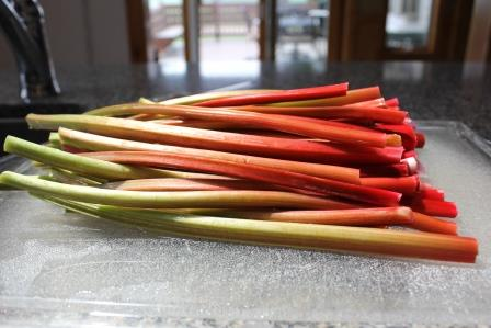 7-20-13 rhubarb wash and cut ends off