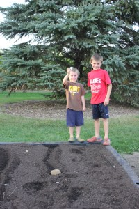 We also are attempting to grow garlic. You asked for it. We are trying it and planted some this fall.
