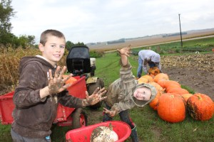 We harvested the pumpkins last Friday and it was quite muddy out there. But the boys didn't seem to mind at all.