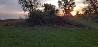 Brush pile and still growing. Thankful for the help we had before the storm to harvest a few fields of pumpkins so we had a place for the brush pile.