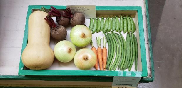 4-H Vegetable Garden Project