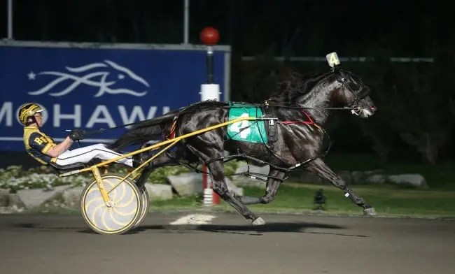 Thirteen per cent of pre-season Pepsi North America Cup favorite Control The Moment (Randy Waples) has been sold to Tara Hills Stud of Port Perry, ON | New Image Media