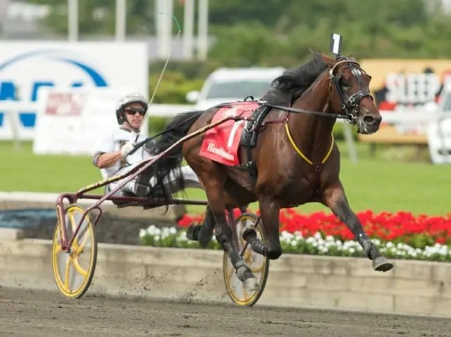 Muscle Hill (Brian Sears) was untouchable in all but one of his starts, including the 2009 Hambletonian | Dave Landry