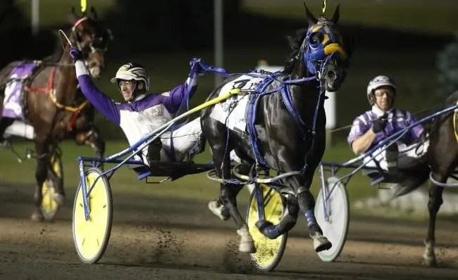 Betting Line (David Miller) won the Pepsi North America Cup in June at Mohawk as part of an 11-race win streak that helped earn a slot in the famed stallion barn at Hanover Shoe Farms. | Dave Landry