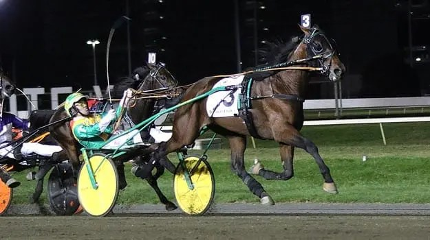 Tim Tetrick scored a natural Crown hat trick when he drove Bar Hopping to victory. | Michael Lisa